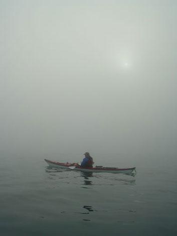 Kroz maglu...  Fog